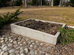 Koivikon Katveessa: Kevät tuli sittenkin