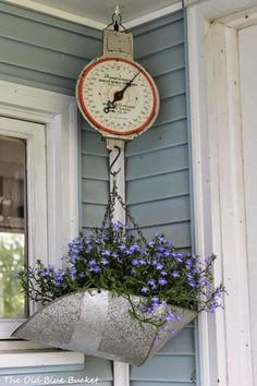 An old scale can be planted with flowers (here, Lobelia) & hung outside on a porch or other sheltered area for added color and interest.
