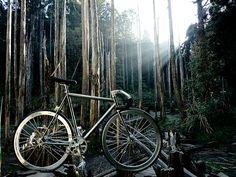 Descubrir Villa La Angostura en bicicleta