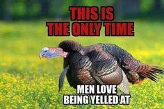 Turkey Fever