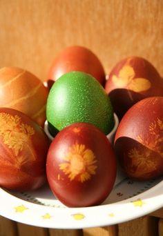 Dessiner sur des oeufs teints : Comment faire ? - Bricolage de Pâques: Des oeufs de Pâques fait maison