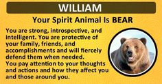 Find out what is your Spirit Animal!