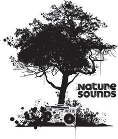 Discover best nature photograph! Discover yourself! Chat & Take quiz and more!  Discover nature sounds with this app. NATURE SOUND SPA&YOGA is a collection of free nature sounds to introduce listeners to the wonderful world of nature sounds. This collection combines elements from the Creativity Collection, the Harmony Collection, the Reflection Collection and the Sleep Collection. This collection is a great way to discover the wonderful world of nature. Echoing Water Drips -CREAT...