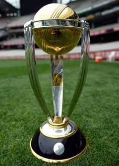 ICC Cricket World Cup 2015 from Feb 14 to Mar 29 - Images Archival Store History Of Cricket, Icc Cricket, Cricket Sport, Cricket World Cup, Test Cricket, Cricket Match, Cricket Crafts, Cricket Games, World Cup Fixtures
