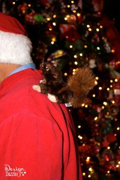 Christmas Vacation Sparky with squirrel Costume Idea - tacky sweater Christmas Vacation Costumes, Christmas Vacation Sweaters, Tacky Christmas Party, Tacky Christmas Sweater, Cheap Christmas Gifts, Christmas On A Budget, Christmas Ideas, Xmas Costumes, Christmas Scenes