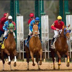 Horse Racing - Hot Springs, AR