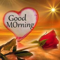 Good Morning Sunrise, Good Morning My Love, Good Morning Picture, Good Morning Images, Today Pictures, Word Pictures, Morning Pictures, Morning Pics, Good Day Quotes