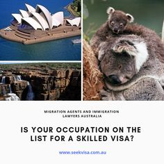Tripsymphony, travel Marketplace for cheap flghts, cheap hotels, cheap holidays, cheap vacations and cheap tours. Hello Australia, Australia 2018, Australia Travel, Cheap Places To Visit, Online Fun, Cheap Holiday, Cheap Hotels, Natural Wonders, Bear