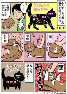 """鴻池 剛さんのツイート: """"【漫画日記】わかった!嫌いなんだ! http://t.co/wUZm6UAc9U"""""""