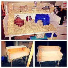 DIY guinea pig cage with an IKEA desk, ikea shelf, and plexiglass