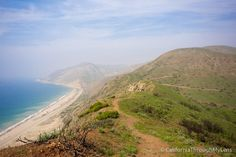 Pacific Coast Highway: Where to Stop on Your Road Trip | California Through My Lens#table-of-pacific-coast-highway-pch-stops#table-of-pacific-coast-highway-pch-stops