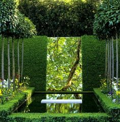 small garden - reflecting pool, mirror, hedging and allée (photo by Dorling Kindersley Limited)