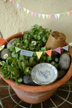 so sweet  we bloom here: Our Fairy Garden