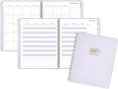 AT-A-GLANCE 2017 WorkStyle Take Charge Weekly-Monthly Appointment Book (WS501-905_17)