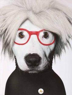 andy warhol-perro