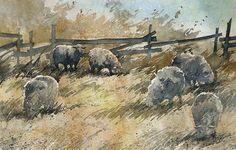 Rafal Rudko. Овцы. Акварель