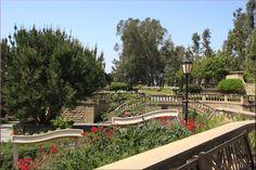 Greystone Mansion Park Beverly Hills – beautiful garden - Los Angeles, LA, California, USA
