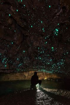 A bioluminescent glow worm fly known as Arachnocampa luminosa makes its home on the walls of the waitomo limestone caves in New Zealand. Its blue light lures in prey, which then gets stuck in a net of mucus. Credit: Dylan Toh and Marianne Lim Beautiful World, Beautiful Places, Beautiful Pictures, Nature Pictures, Places To Travel, Places To See, Fuerza Natural, Foto Real, Land Scape