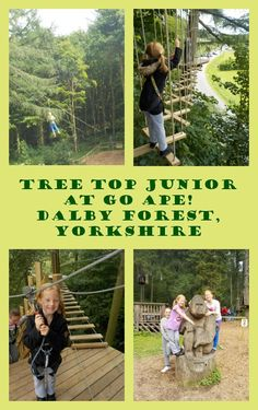 Kids Days Out Reviews: Tree Top Junior, Go Ape! at Dalby Forest, North Yorkshire