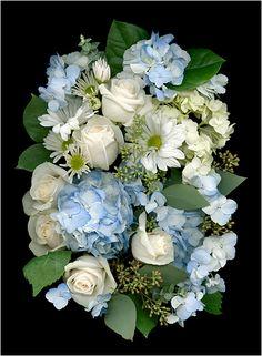 Heavenly Blues, Floral Scanning, Scanner Photography By Ellen... - Scanner Photography By Ellen Hoverkamp