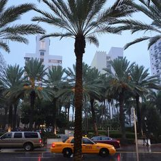 """See you, Miami ☺️ #bncviaja #forçafocoeflorida #regram @cabideiro"""