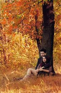 Image Search Results for fall couple photography