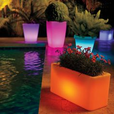 Inconspicuous white planter by day…party planter with pizzazz by night! These fun solar lighted planters have multiple color options plus varying degrees of brightness so you can change their effect depending on your party's mood!