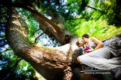 Wedding: Under the Tree