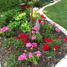 My flower garden in the front of my house