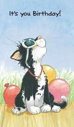 🎈Happy Birthday to You! Cute Happy Birthday, Happy Birthday Pictures, Happy Birthday Quotes, Cat Birthday, Happy Birthday Greetings, Birthday Card Sayings, Birthday Wishes Funny, Birthday Messages, Birthday Greeting Cards