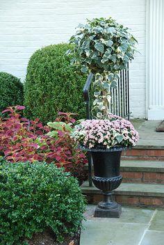Topiary / Urn