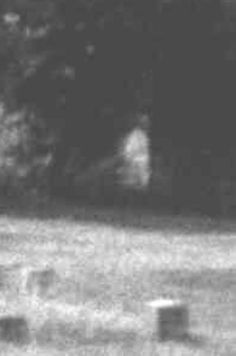 Inhabitants reported seeing the figure of a ghostly nun wandering the grounds, writing would appear on the wall, and servant bells would ring for no reason. Real Ghost Pictures, Ghost Images, Creepy Stories, Ghost Stories, Haunting Stories, Horror Stories, Scary Places, Haunted Places, Ghost Orbs