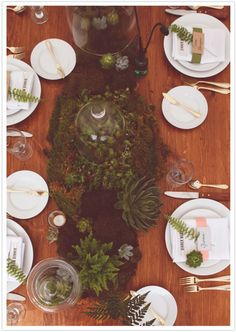 Love the tiny succulents on the napkins, and the mossy vegetation at center. Not overcrowded or overly stylized-- looks just right! I would just add a bit of color here and there.