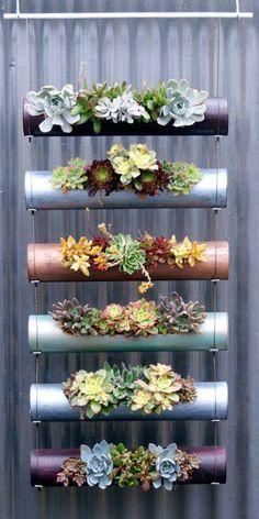 30 Captivating Backyard Succulent Gardens You Can Easily DIY 30 faszinierende Hinterhof-Sukkulenten- Vertical Wall Planters, Vertical Garden Design, Vertical Gardens, Small Gardens, Hanging Planters, Hanging Terrarium, Hanging Gardens, Diy Hanging, Hanging Baskets