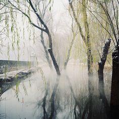 China by Roy Qiu