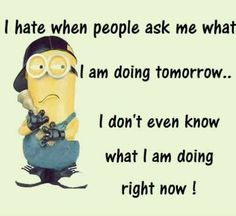 Funny Minion, hate, people, tomorrow  。◕‿◕。 See my Despicable Me  Minions pins https://www.pinterest.com/search/my_pins/?q=minions