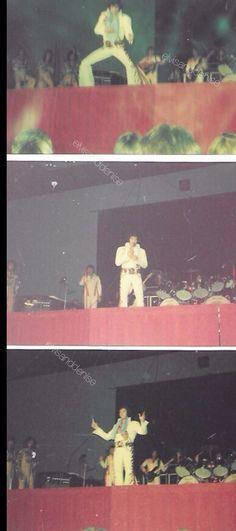 Concert, 1974 Tiger suit Source Ebay