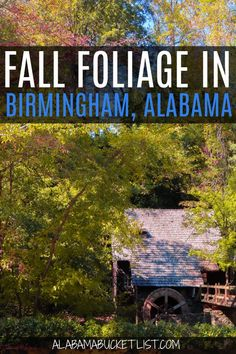 Fall foliage in Birmingham is plentiful so if you live in the Magic City, you don't have to drive far for vibrant, amazing fall colors! #birmingham #alabama #fall #foliage #autumn