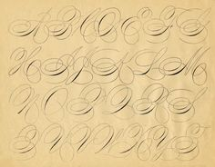 """Click on image to enlarge It's time for yet another graphic in my weekly series """"Spencerian Saturday""""!!! Every Saturday I add another gorgeous image from an early calligraphy book. The original scanned version of this gorgeous pen flourished swirly alphabet, is seen just above, and at the very top of the page, is the cleaned …"""