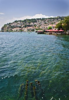 color of the water - , Ohrid