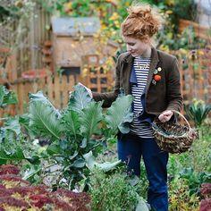 Vysněná zahrada: Alys Fowler a její Jedlá zahrada