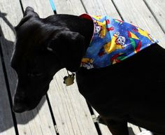 This slip on bandana features dogs in rain gear and umbrellas. It has been handmade in America. It is the slip on type of bandana which is safer for your dog to wear since it simply slips onto your do