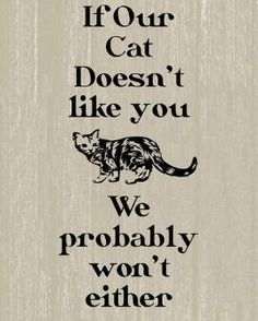 "If Our Cat Doesn't Like You We Probably Won't Either Wall Art 8"" x 16"""