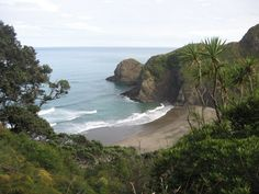 View of White's Beach from the track down from Anawhata Road Nz History, Im Back, Auckland, New Zealand, Beaches, Track, Heaven, Water, Outdoor