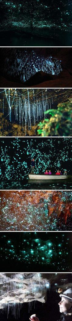 7 Incredible Pictures of the Waitomo Glowworm Caves - TechEBlog