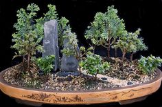 saikei living landscapes in miniature