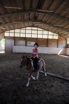 Pony, Green, Pony Horse, Ponies, Front Bangs, Baby Horses
