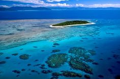 Green Island - Great Barrier Reef Australia. Need I say more? Great Barrier Reef, Cymru, Cairns, Sail Away, Countries Of The World, The Incredibles, Wales, Islands, Cities