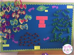 Butterfly Life Cycle Bulletin Board - such a cute idea