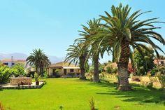 Description: Fijn appartement in een mooie groene tuin dicht bij Acharavi en het strand Ruime appartement in grote tuin Zodra jebij Harris Appartementenaankomt ben je ingepalmd. Wat is het hier mooi en gezellig! De verzorgde groene tuin is een lust voor het oog. Statige palmbomen en bloeiende zomerbloemen tegen de strakblauwe hemel. De rode dakpannen van de aaneengeschakelde vakantiehuisjes van Harris Appartementenglimmen onder de zon en de lichtgele gebouwen met rustieke bogen doen er nog…